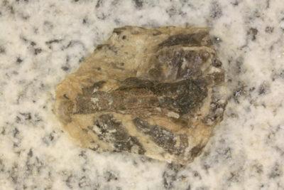 Beryll brun krystall i moderstein fra Iveland i Setesdal 30g 3x4cm
