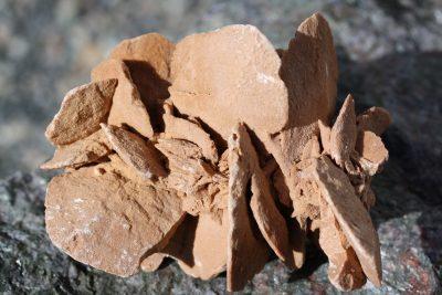 Ørkenrose fra Sahara 1.4kg 12x20cm