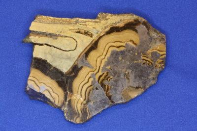 Galmei A skalk 160g 5×7.5cm fra Olkusz i Polen «Sphaleritt Galena»
