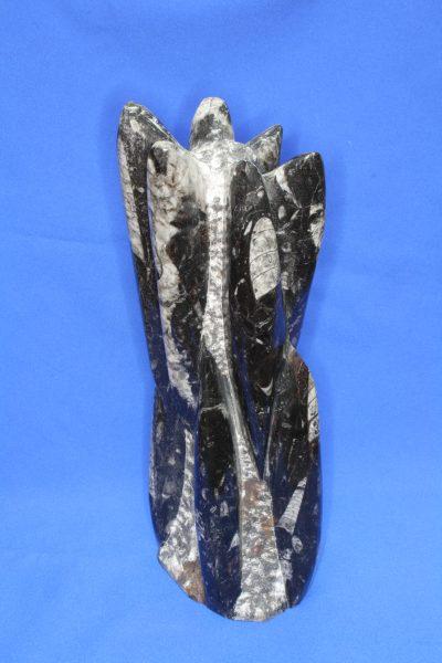 Orthocer skulptur C 3.9kg 33cm høy Devon Ca 400 mill. år fra Marokko