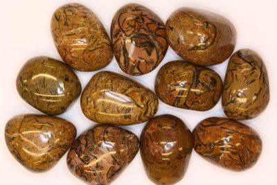 Slangestein polert 2.5 til 3cm
