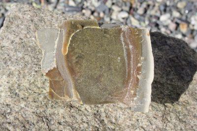 Septarian med sideritt fra Steendorp i Belgia 0.56kg 6x9cm