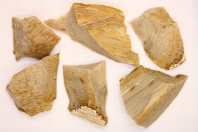 Agat palmholz råsteinsbit 3 til 4cm