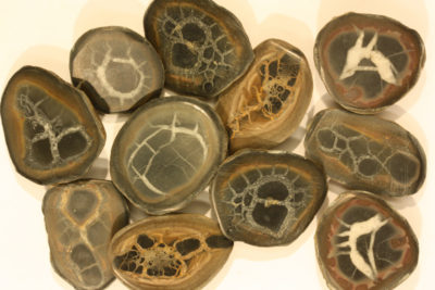 Septarie polerte halve fra Marokko 3 til 5cm