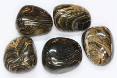 Stromatolitt polert  2.5 til 3cm