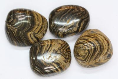 Stromatolitt polert  ca 3cm