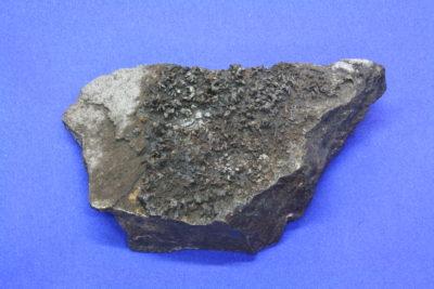 Karyopilitt A 200g 5×9.5cm fra Harstigen Mine Persberg Filipstad Sverige