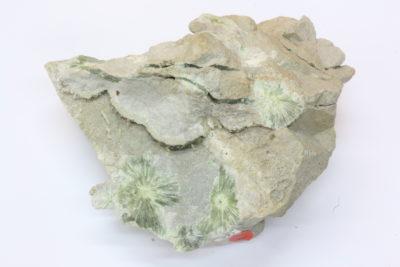 Wavellitt C krystaller på moderstein 275g 7.5x10cm  fra Pencil Bluff Garland Co Arkansas USA