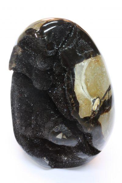 Septarian C med sort aragonitt 365g 9.5cm høy fra Taramandroso i Madagaskar