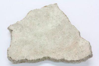 Dinosaur eggskall  Titanosaurus 5×6.5cm Kritt ca 85mill. år fra Patagonia Argentina